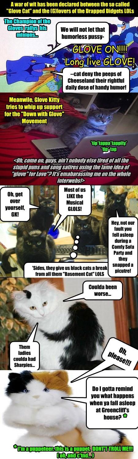 glove war declared caption wit Cats - 8812501248