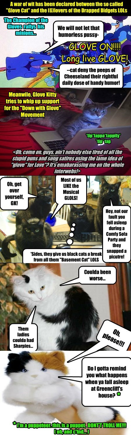 glove war declared caption wit Cats - 8812501248