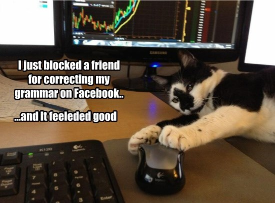 cat grammar feeleded correcting friend facebook blocked good caption - 8812783104