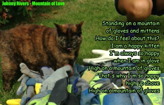 Standing on a mountain  of gloves and mittens How do I feel about this?  I am a happy kitten I'm always so happy  when I am in glove High on a mountain of gloves That's why I'm so happy  high up above High on a mountain of gloves