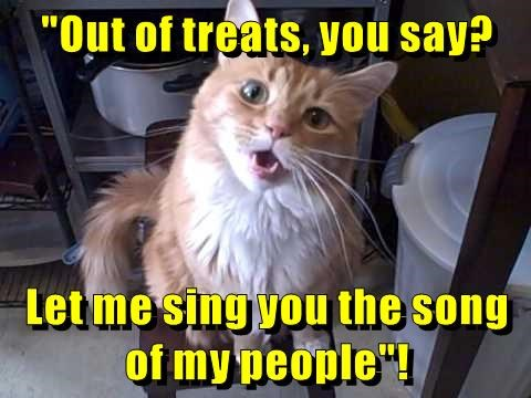 cat,out,people,song,sing,dog treats,caption