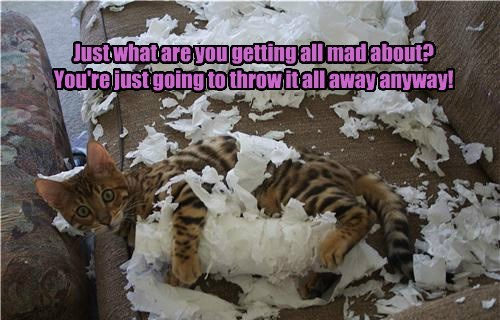 Just what are you getting all mad about? You're just going to throw it all away anyway!