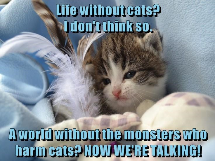 Life without cats?                                                              I don't think so.  A world without the monsters who harm cats? NOW WE'RE TALKING!