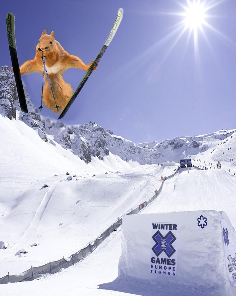 Skier - WINTER GAMES EUROPE TIGNES ISCHER