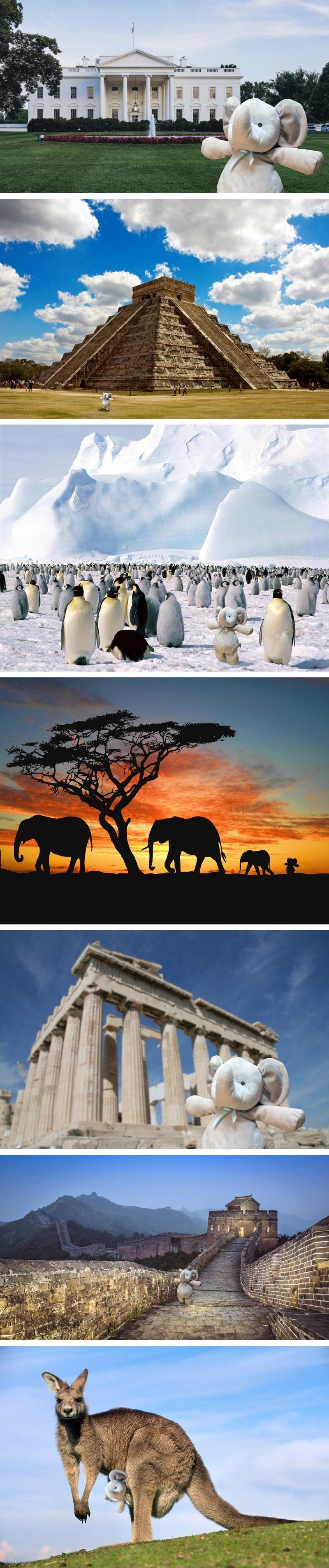 Elephant - Thillii