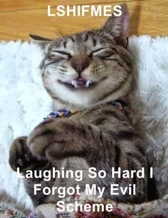 LSHIFMES  Laughing So Hard I Forgot My Evil Scheme