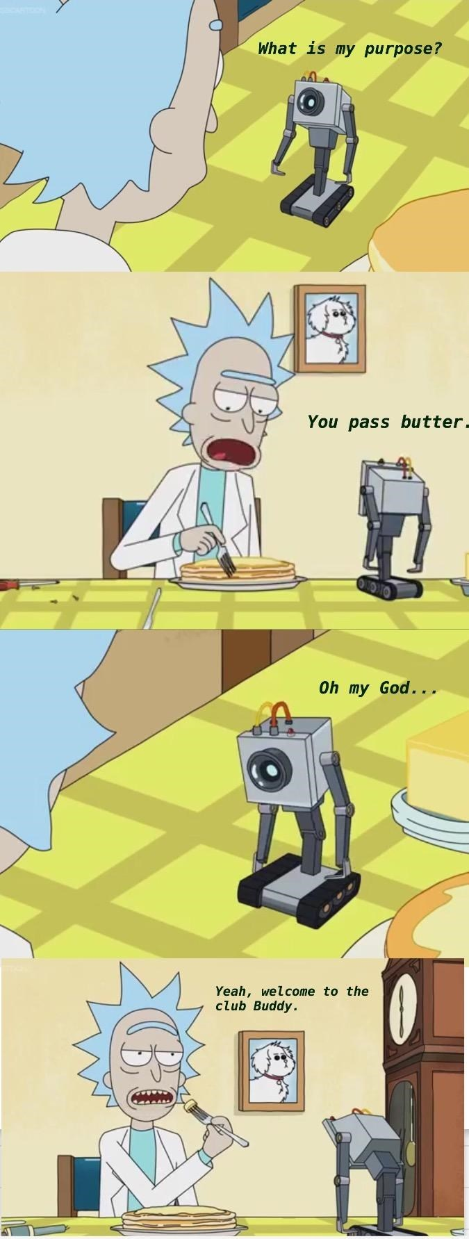 true-story-web-comics-cartoons-rick-and-morty-relatable