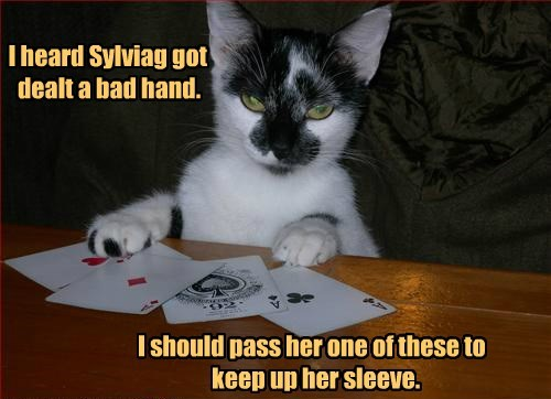 bad cat caption dealt sylviag hand