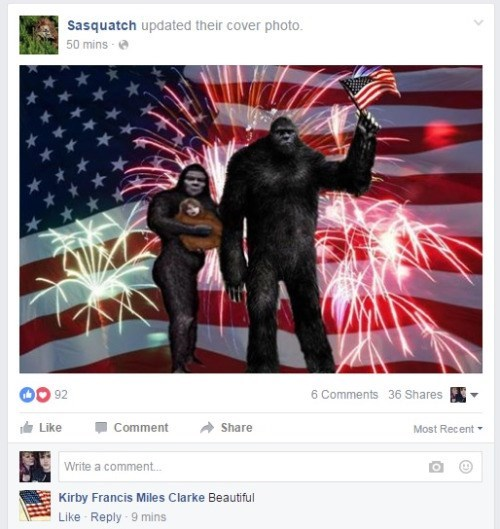 murica failbook facebook america