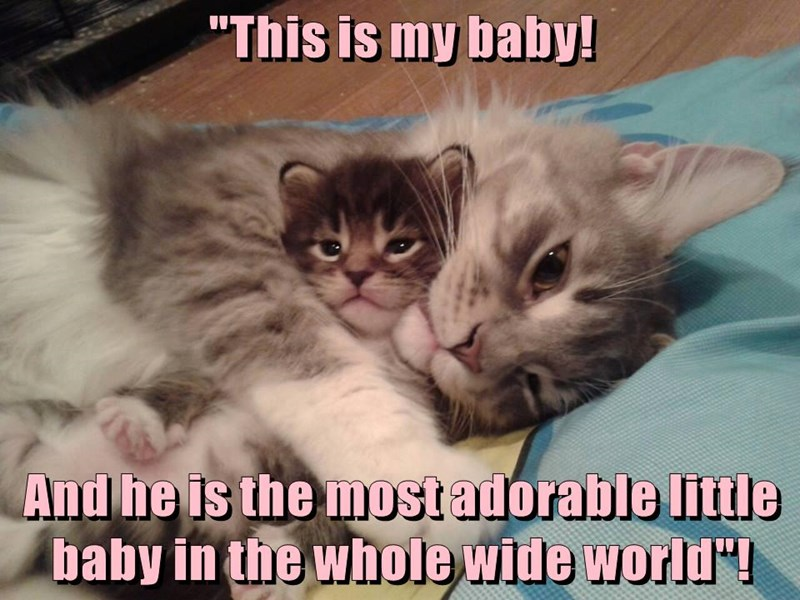 """This is my baby! And he is the most adorable little baby in the whole wide world""!"