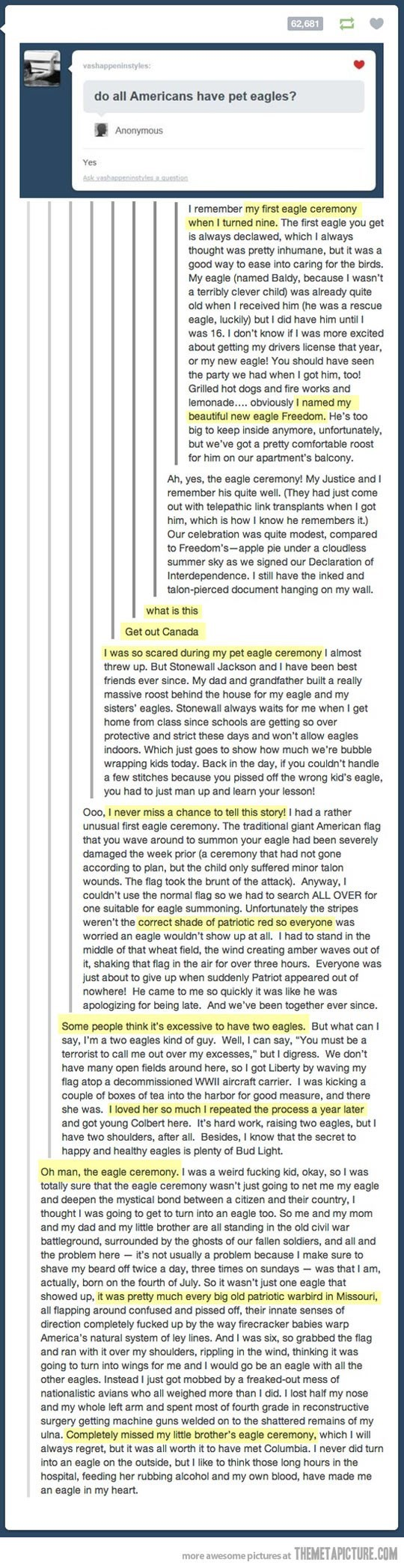eagles tumblr murica trolling - 8816740608