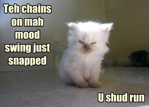 run snapped kitten chains swing mood caption - 8817623808