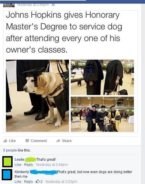 dogs-degrees facebook college - 8818011136