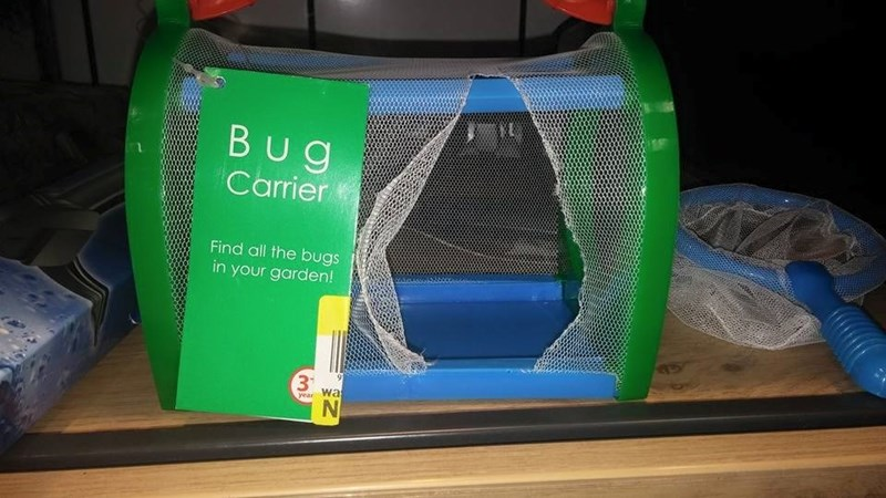 bugs FAIL products