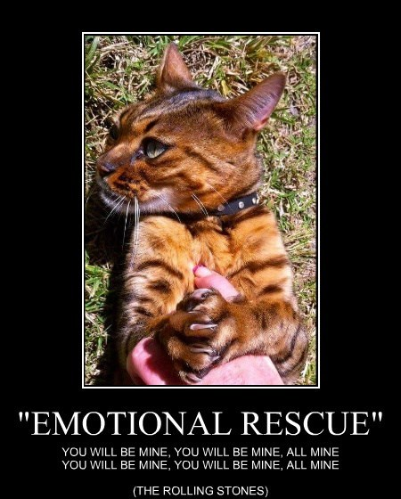 """EMOTIONAL RESCUE"""