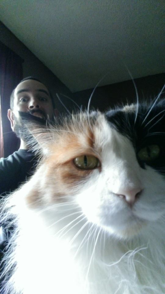 I like to photobomb my cat