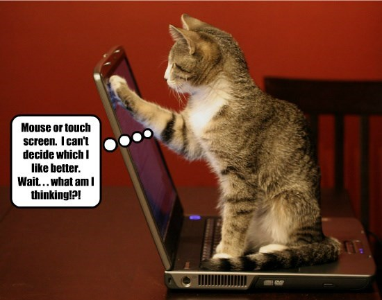 like cat decide touchscreen better what thinking caption mouse