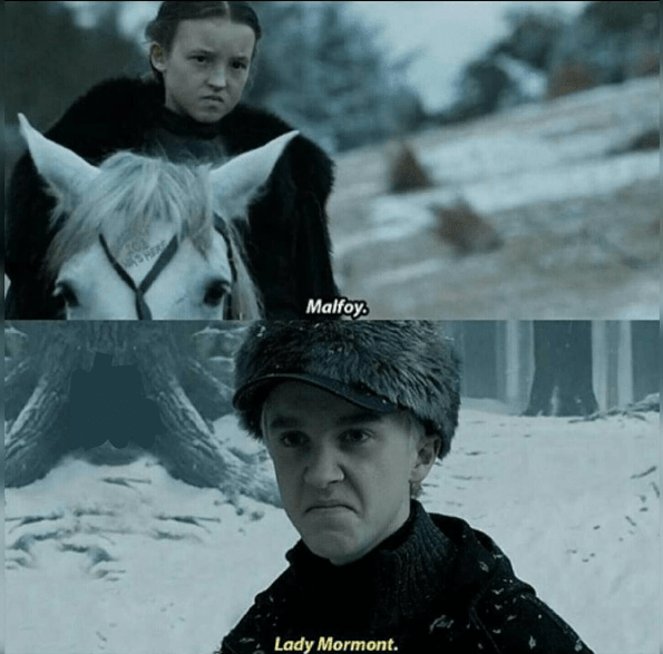 funny-lady-mormot-game-of-thrones-draco-malfoy-crossover