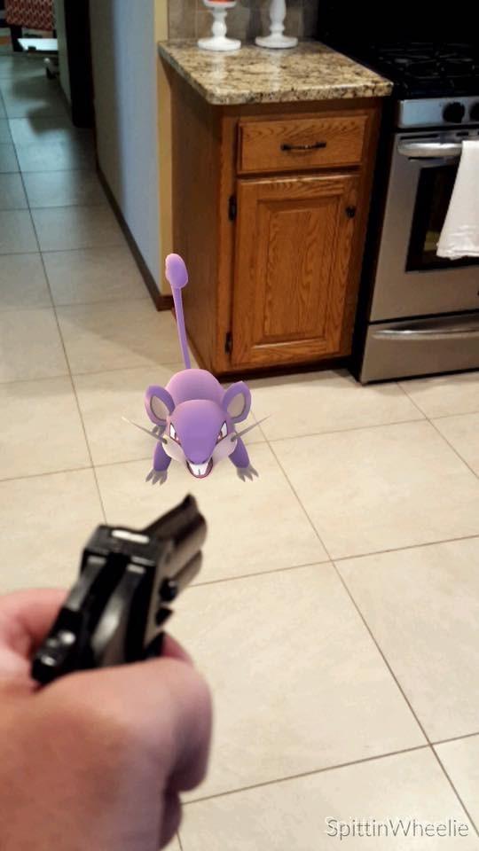 Pokémon pokemon go rattata - 8818874112