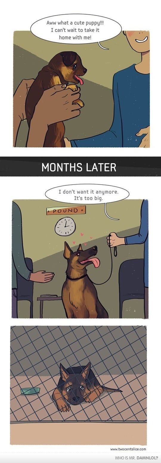 dogs web comic - 8818927104