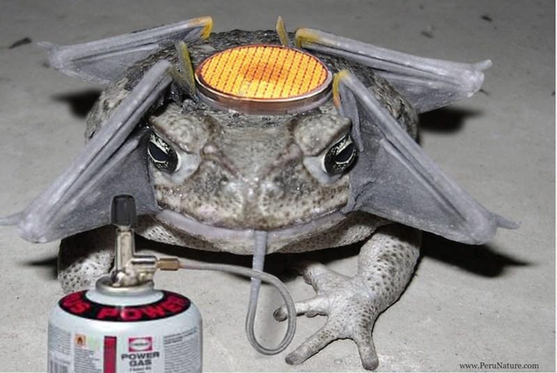 Portable stove - POWER GAS www.PeruNature.com