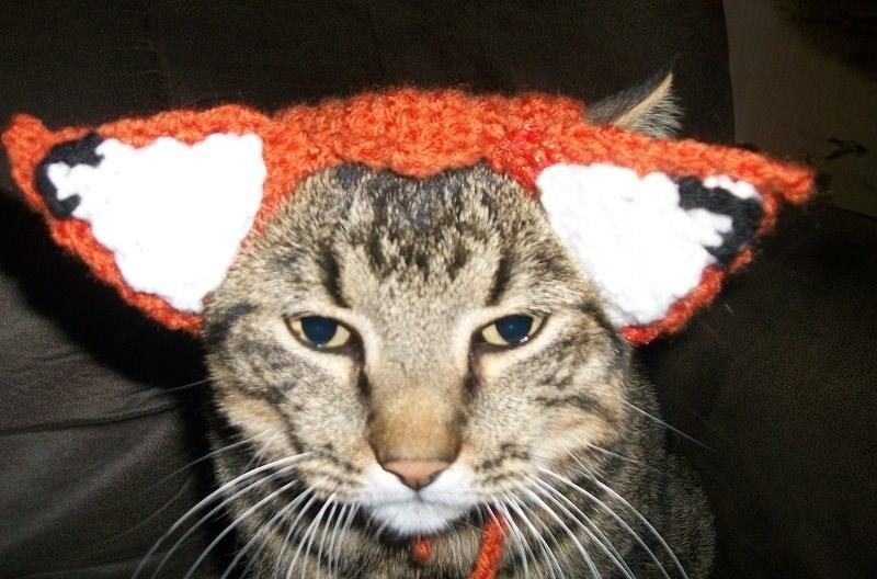 crochet ears fox Cats - 8819188224