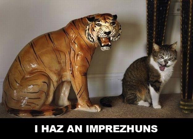 impression tiger Cats - 8819188480