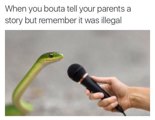 parenting Memes snake - 8819206656