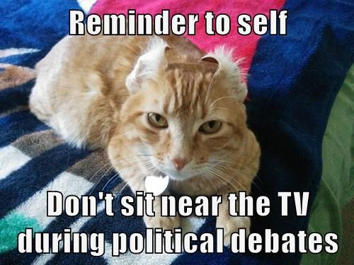 Reminder to self Don't sit near the TV during political debates
