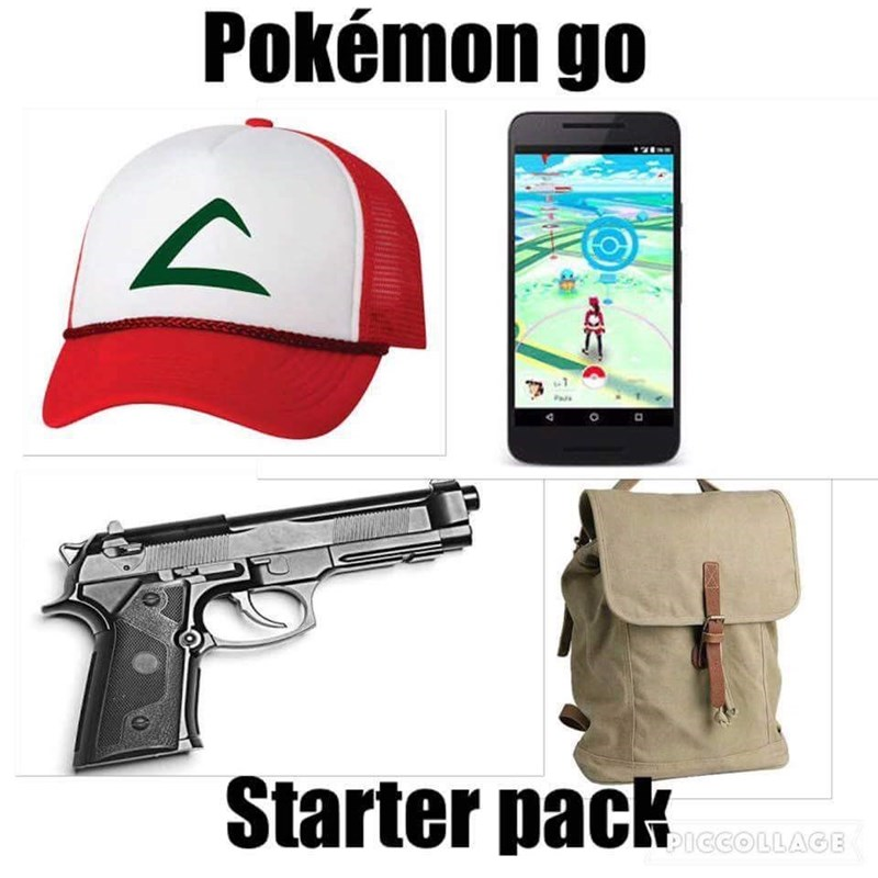 funny Pokémon pokemon logic video games IRL pokemon go - 8819276032