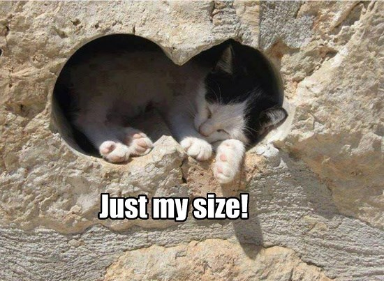 Just my size!