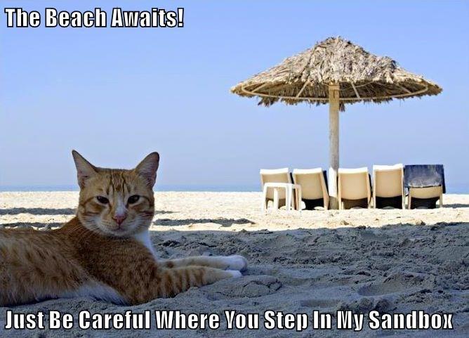 The Beach Awaits!  Just Be Careful Where You Step In My Sandbox