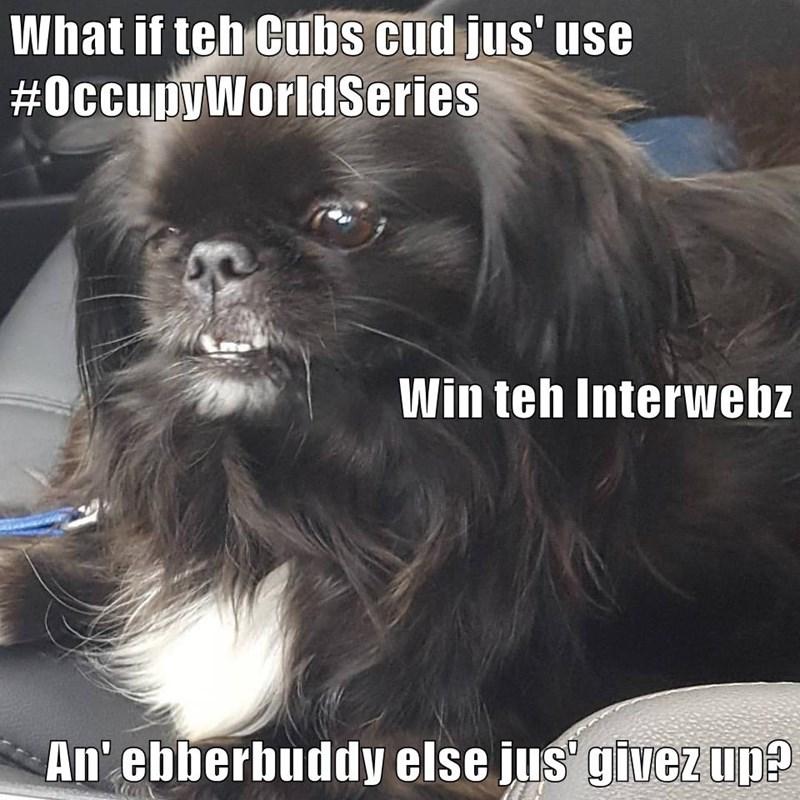 What if teh Cubs cud jus' use #OccupyWorldSeries Win teh Interwebz An' ebberbuddy else jus' givez up?