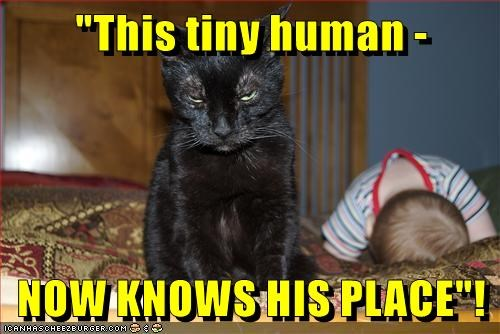"""This tiny human - NOW KNOWS HIS PLACE""!"