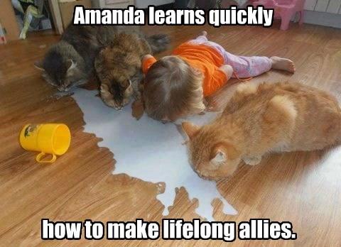 how to make lifelong allies.
