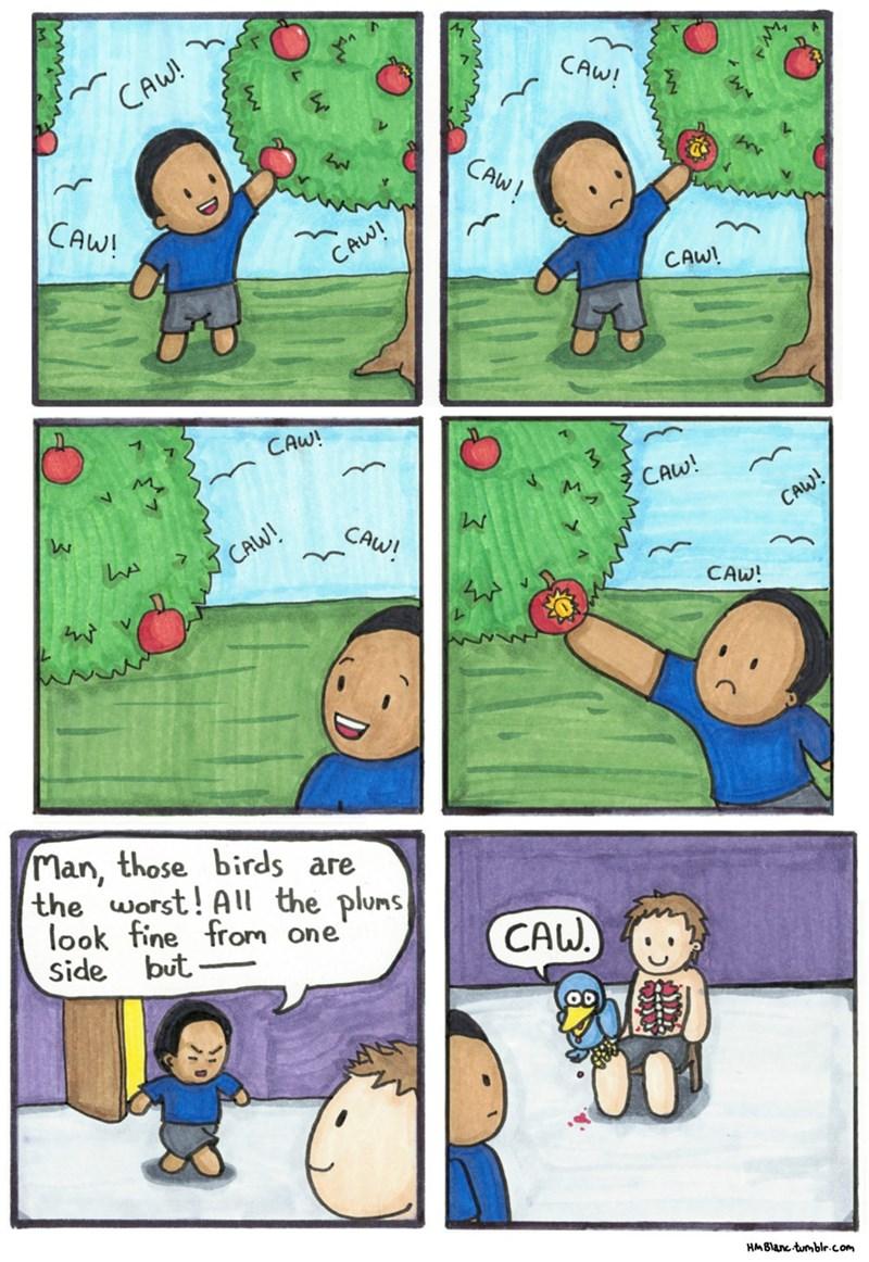 web-comics-plum-season-with-dark-birds-twist