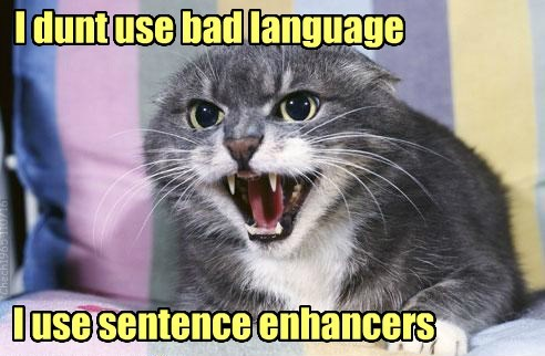 bad cat sentence enhancers language dont caption use