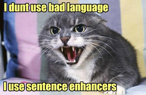 bad cat sentence enhancers language dont caption use - 8820057856