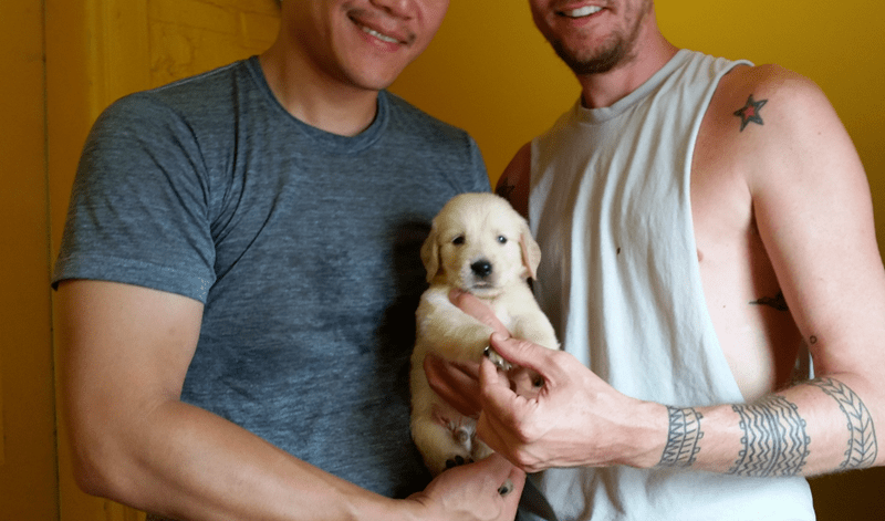 We're did it! We're Daddies! Meet Abe, our new Golden Retriever Pup.