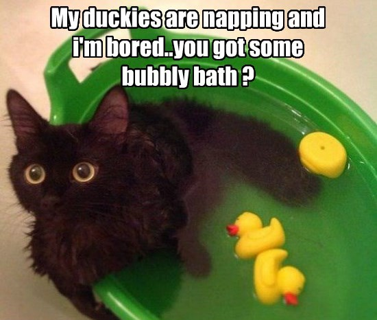 My duckies are napping and i'm bored..you got some bubbly bath ?