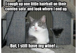 A hairball?  No sofa for you!