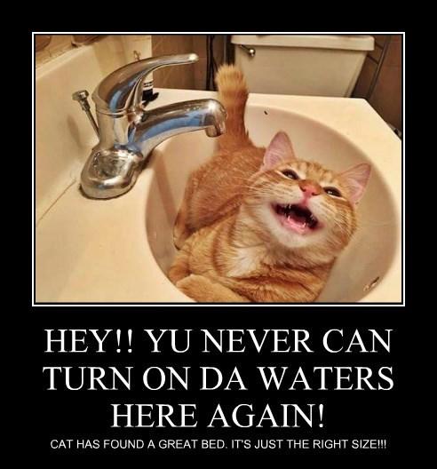 HEY!! YU NEVER CAN TURN ON DA WATERS HERE AGAIN!