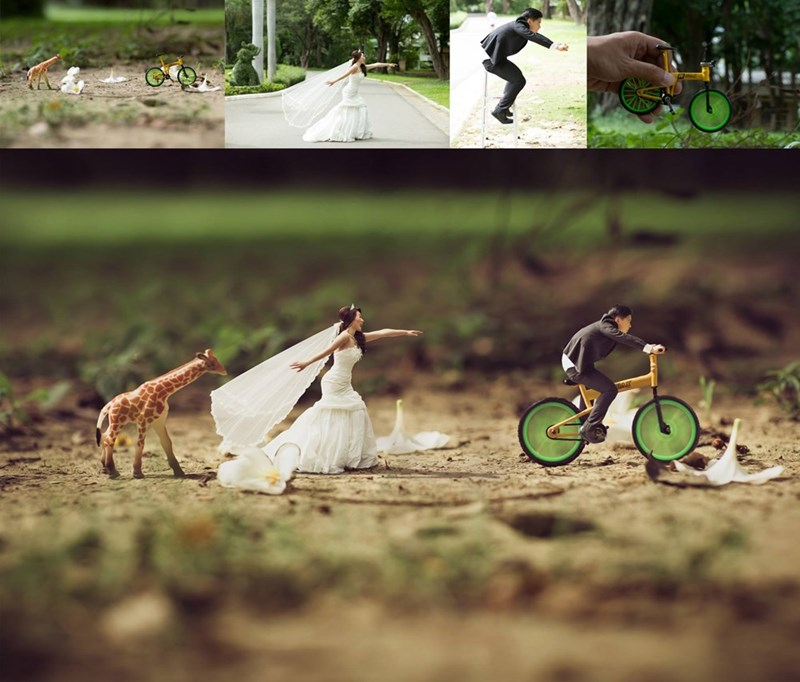 shrunken wedding photos - Green