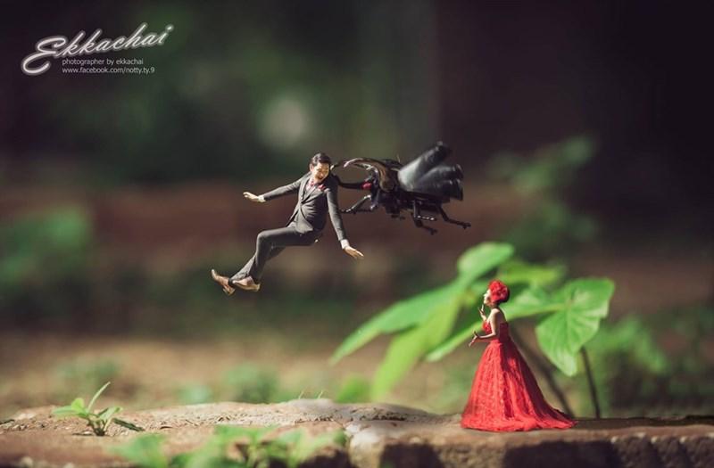 shrunken wedding photos - Nature - glbachai photographer by ekkachai www.facebook.com/notty.ty.9