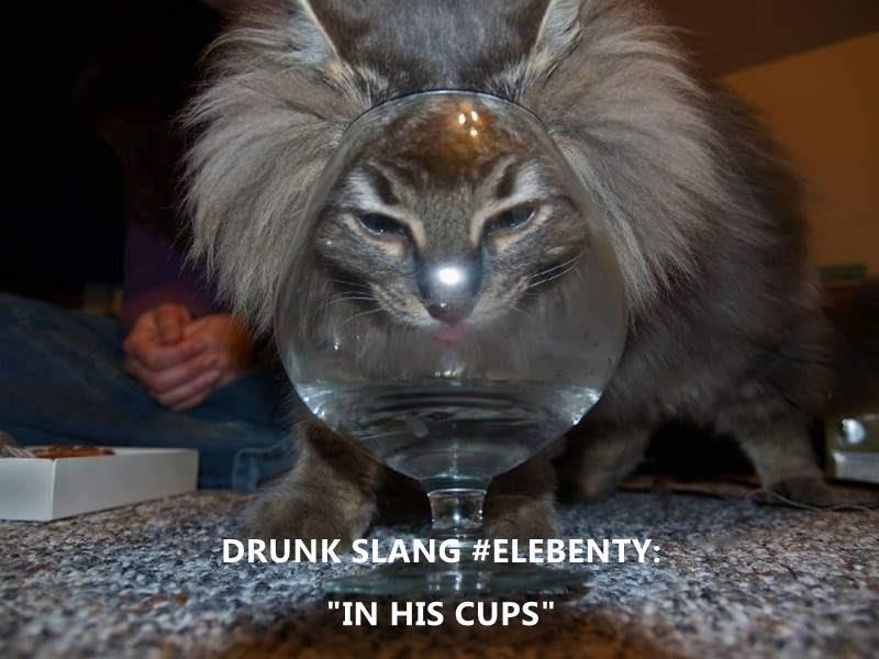 """DRUNK SLANG #ELEBENTY:                                                                  """"IN HIS CUPS"""""""