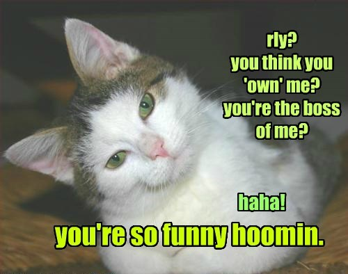 you're so funny hoomin.