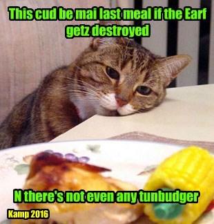 Cheezburger Image 8821732608