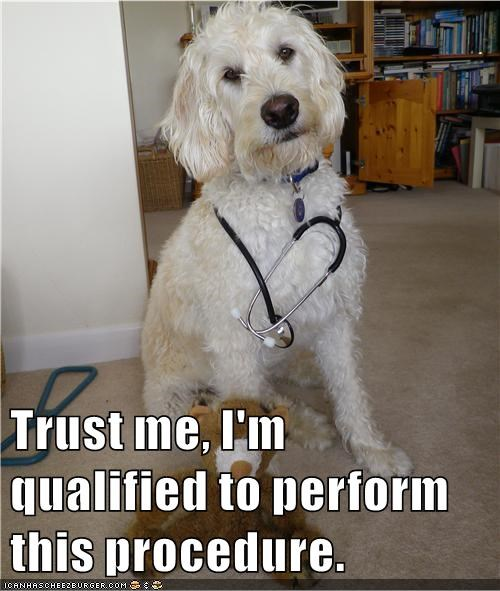 Image: dog with stethoscope.  Text: Trust me, I'm qualified to perform this procedure