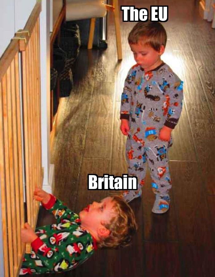 brexit EU UK - 8821797376