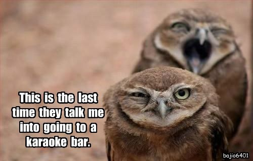 This  is  the  last  time  they  talk  me  into  going  to  a  karaoke  bar.